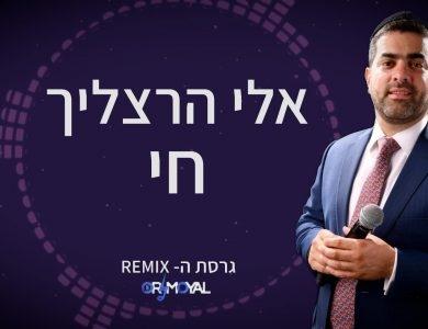 אלי הרצליך - חי - גרסת הרמיקס דיג'יי אור מויאל - גרפיקה