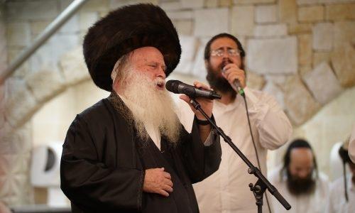 דוד רפאל בן עמי - צילום אברהם שפירא