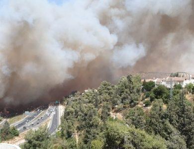 השריפה בכביש 1 | צילום: מתן דוגה