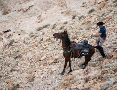 רוכבים על סוסים בנחל עוג במדבר יהודה, 18 בינואר 2020. ///צילום: יניב נדן / פלאש 90