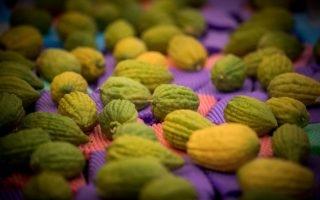 שוק ארבעת המינים | צילום:  Yonatan Sindel/Flash90