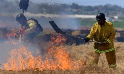 שריפות היום ברחבי הארץ // צילום: פלאש 90