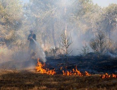 שריפה בעוטף עזה | צילום: פלאש 90