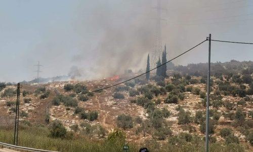השריפה סמוך לכביש 443 צילום: יצחק שוורץ