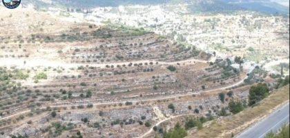 השתלטות בזמן אמת: הרשות הפלסטינית